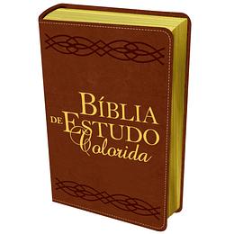 Bíblia de estudo colorida letra grande, capa castanha