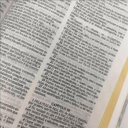 Bíblia Sagrada ACF Capa dura slim
