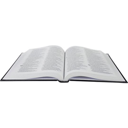 Bíblia Sagrada - Leão