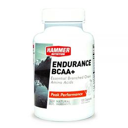 Endurance BCAA+ Hammer Nutrition