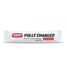Fully Charged Individual (sobre)
