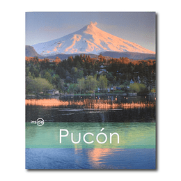 INSIDE PUCON
