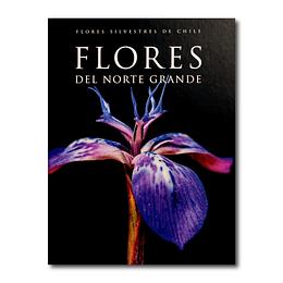Flores del Norte Grande - Felipe Orrego