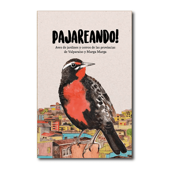 Pajareando ! - Aves De Jardines Y Cerros De Las Provincias De Valparaíso Y Marga Marga - Claudia Ortiz