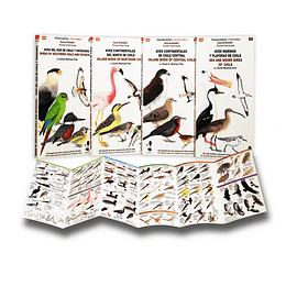 Pack Guías de Bolsillo - Aves de Chile