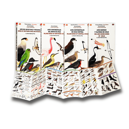 Pack Libro y Guias Aves de Chile