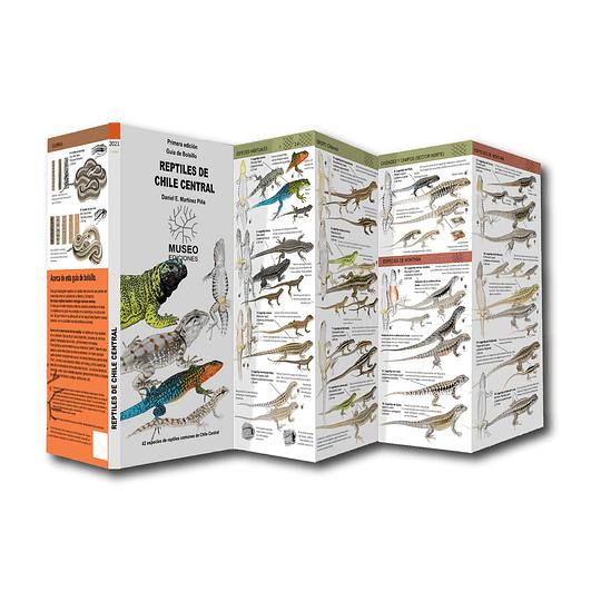 Guía de Bolsillo Reptiles de Chile Central