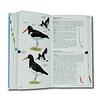 Aves de Chile - Sus islas oceánicas y Península Antártica
