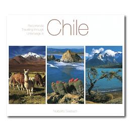 Recorriendo Chile