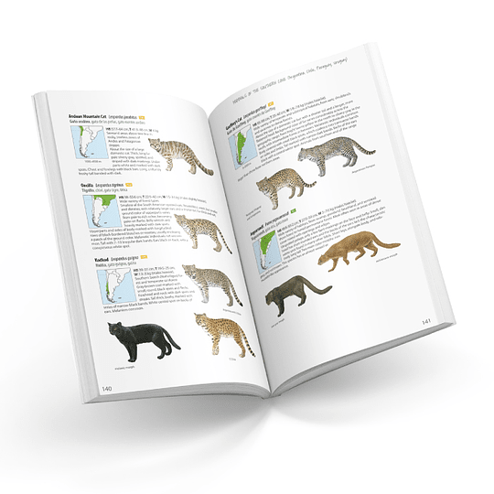 Mammals of the Southern Cone (Argentina, Chile, Paraguay, Uruguay)