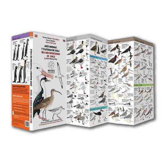 Guía de Bolsillo Aves marinas y Playeras de Chile