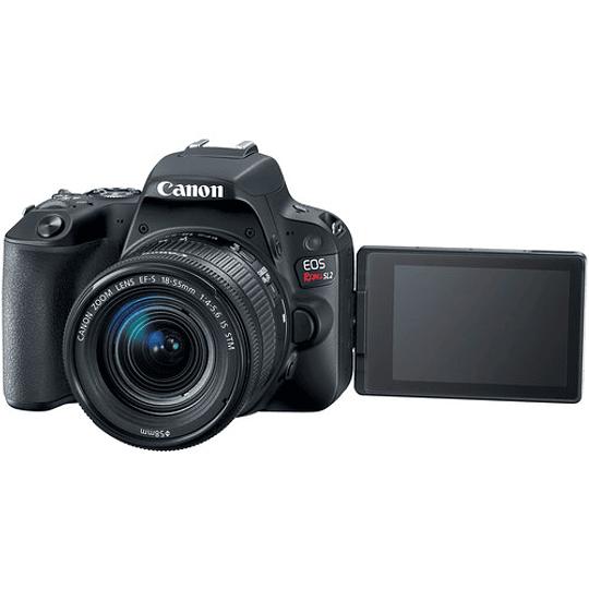 Canon Cámara EOS Rebel SL2 con Lente EF-S 18-55mm f/4-5.6 IS STM - Image 3