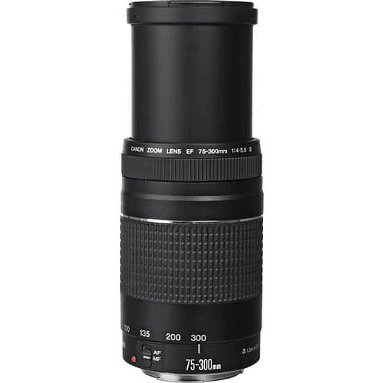 Lente Canon EF 75-300mm f/4-5.6 III - Image 2