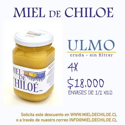 4x Miel de Ulmo 500gr