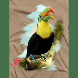 Toucan Art