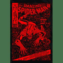 Spider Comic