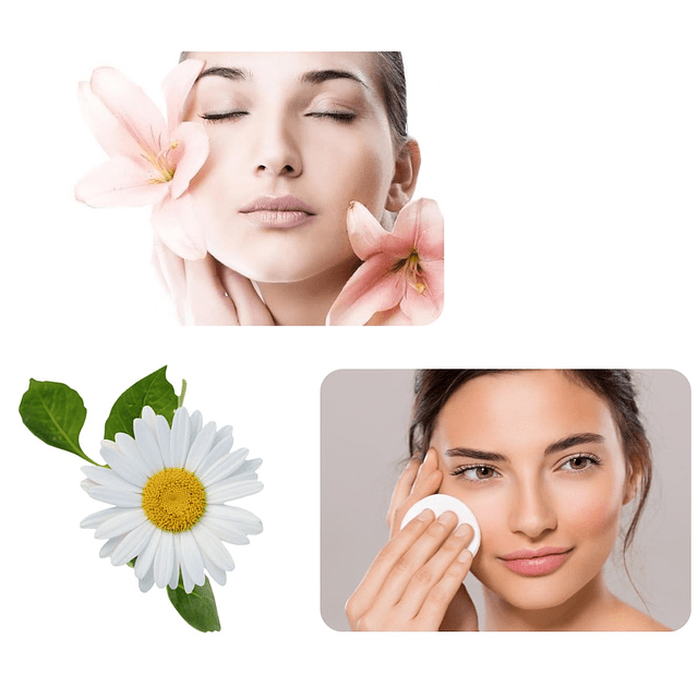 Leche de limpieza facial antiarrugas natural humectante rostro Chile
