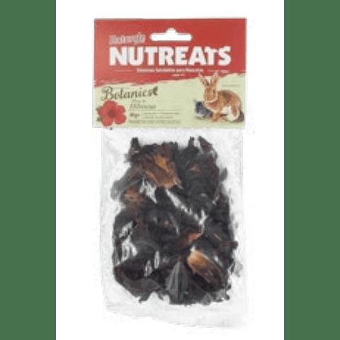 Flores Botánicas de Hibiscus Naturale For Pets