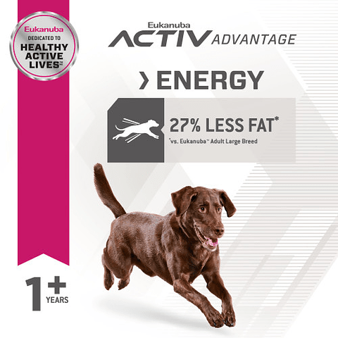 Eukanuba Adult Large Breed Fit Body 13,6 Kg