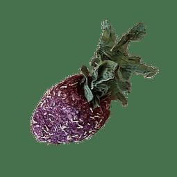 Frutillas La Granjita de conejino