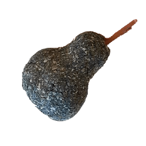 Pera La Granjita de Conejino
