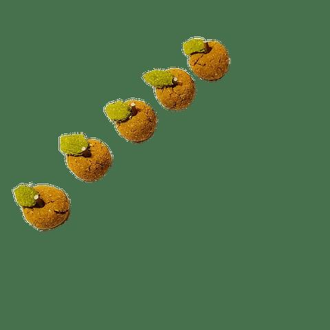 Naranjas La Granjita de Conejino