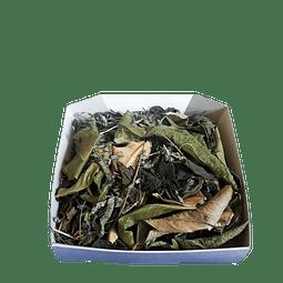 Delicious Green La Granjita de Conejino