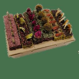 Barritones Edicion Aniversario La Granjita de Conejino