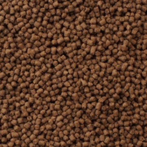 Mazuri Erizo 1,5 kg