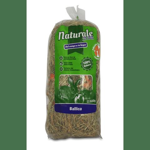 Heno de Ballica Zanahoria Naturale for Pets 600 gr