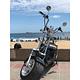 WOQU City Harley Negra - Image 3