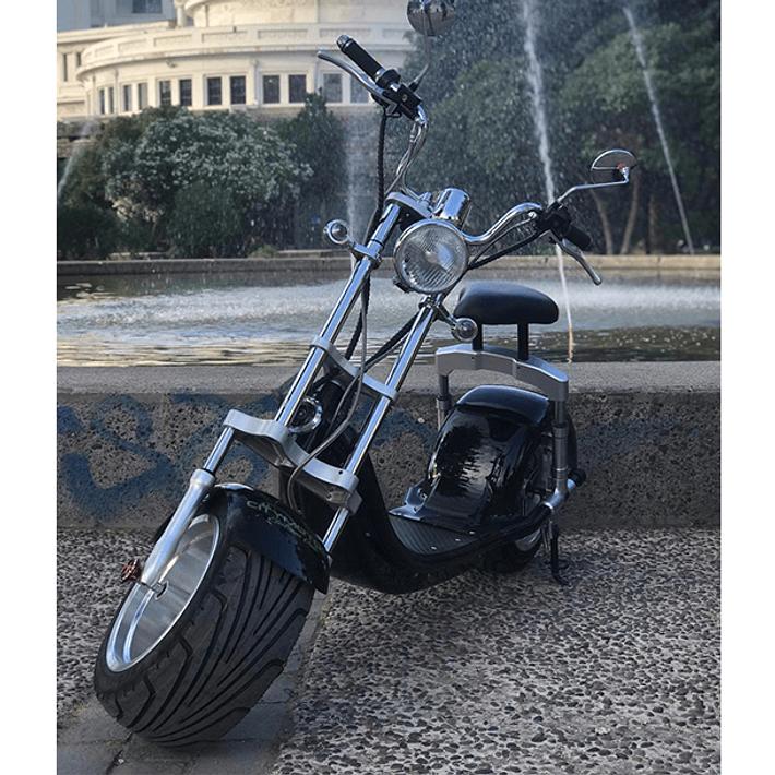 Harley Negra- Image 8