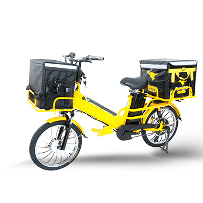 Ebike Delivery- Image 1