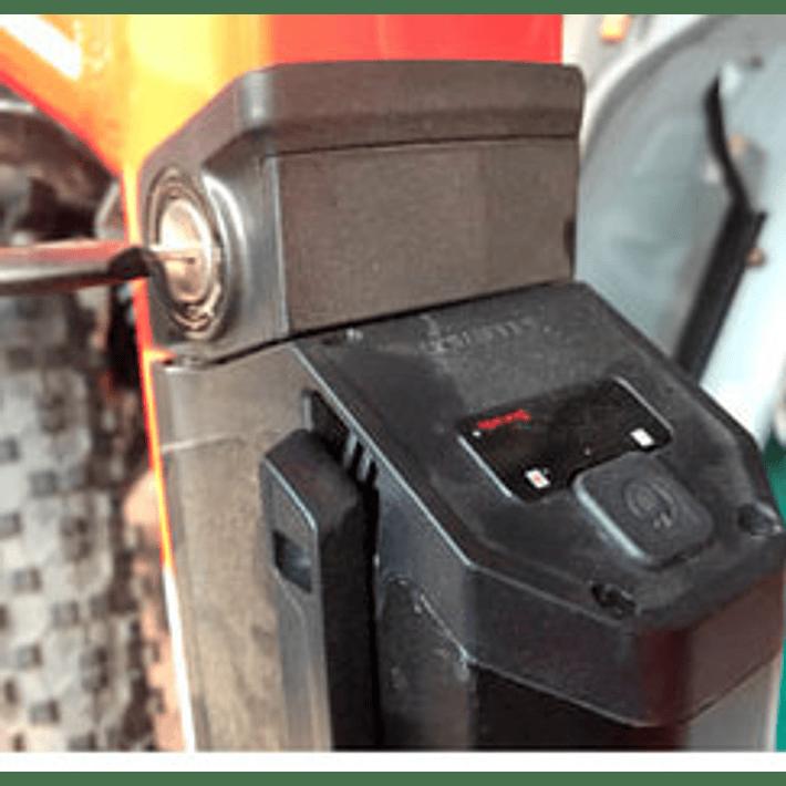 Ebike Cargo Pro- Image 10