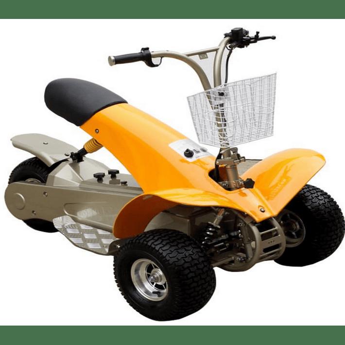 Golf Cart- Image 5