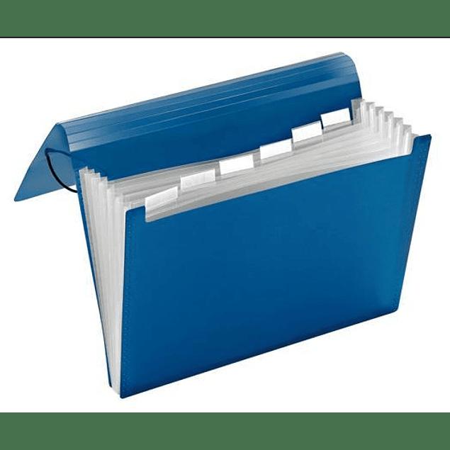 Acordeones Azul Legal Studmark ST-00040-C