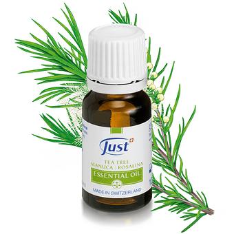 Árbol del té | Manuca | Aceite Esencial de Rosalina | 10 ml