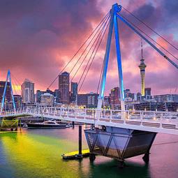 14 semanas inglés en Auckland $3.350.000 RESERVA POR
