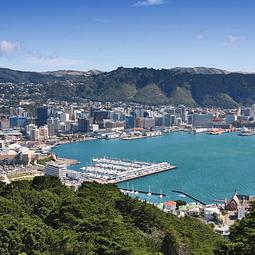 14 semanas inglés en Wellington $3.835.000 RESERVA POR