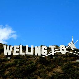 44 semanas inglés en Wellington $8.370.000 RESERVA POR