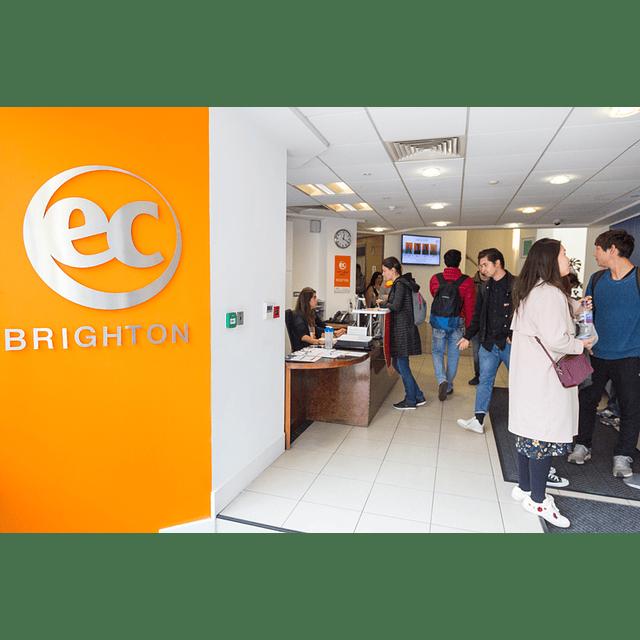 23 semanas inglés en Brighton $5.820.000 RESERVA POR
