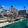 12 semanas inglés en Auckland $3.540.000 RESERVA POR