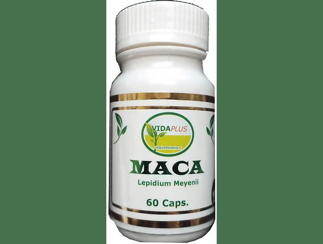 MACA PERUANA 5 FRASCOS DE  60 CAPSULAS DE 500 MG - DESPACHO GRATIS