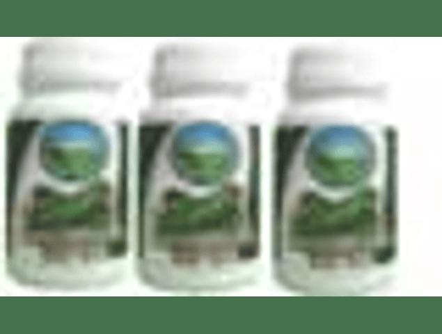 CHANCAPIEDRA 3 FRASCOS DE 60 CAPSULAS DE 310 mg