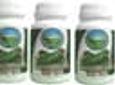 CHANCAPIEDRA 4 FRASCOS DE 60 CAPSULAS DE 500 mg DESPACHO GRATIS
