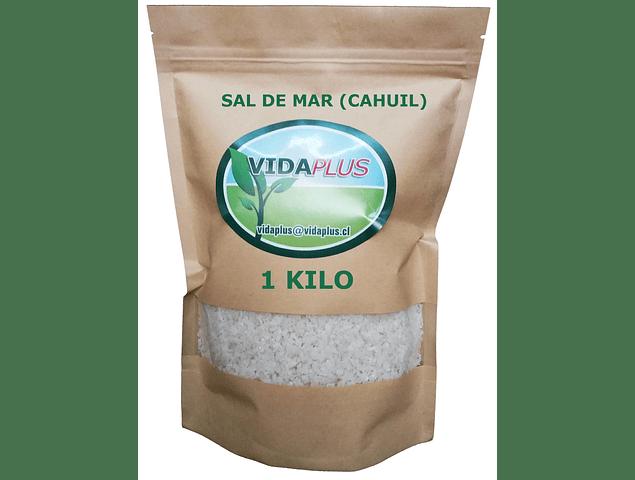 SAL DE MAR PURA (CAHUIL) 1 KILO . ENVASE ECOLOGICO