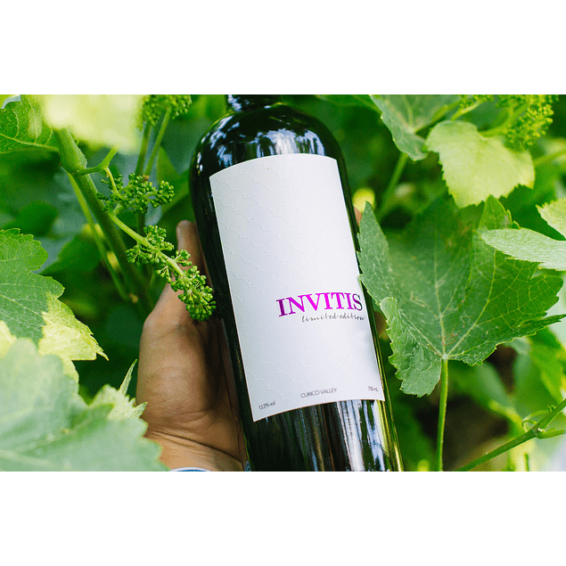 Petit Verdot - Limited Edition