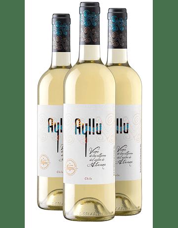 Ayllu Blancos 2019 (Caja 5 unidades)