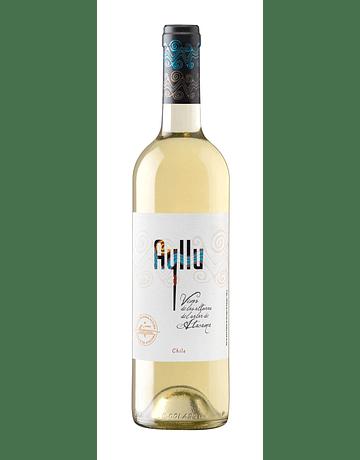 Ayllu White wines 2019 (5 bottle box)