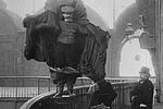 ¿Saben quién fue Franz Reichelt y qué hizo?